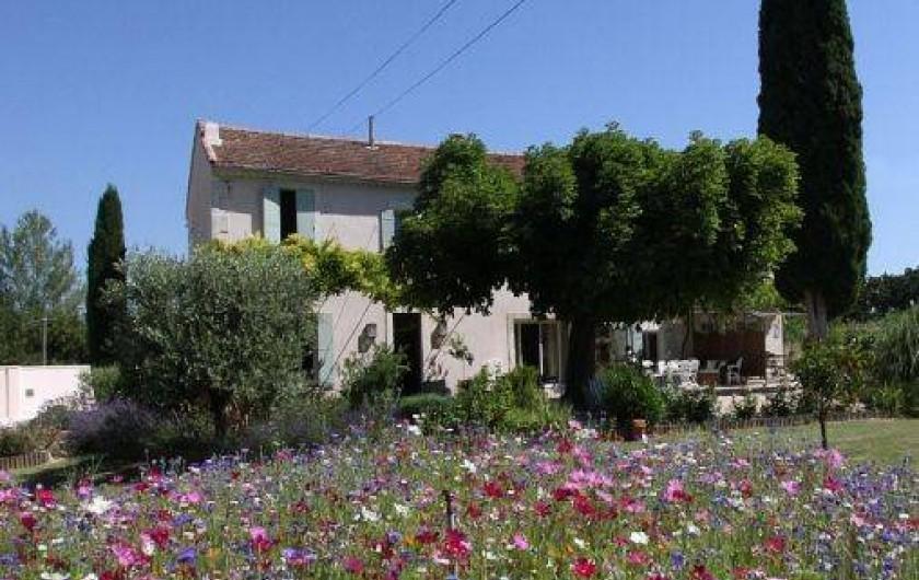 Location de vacances - Mas à Saint-Rémy-de-Provence - Verdure et fleurs