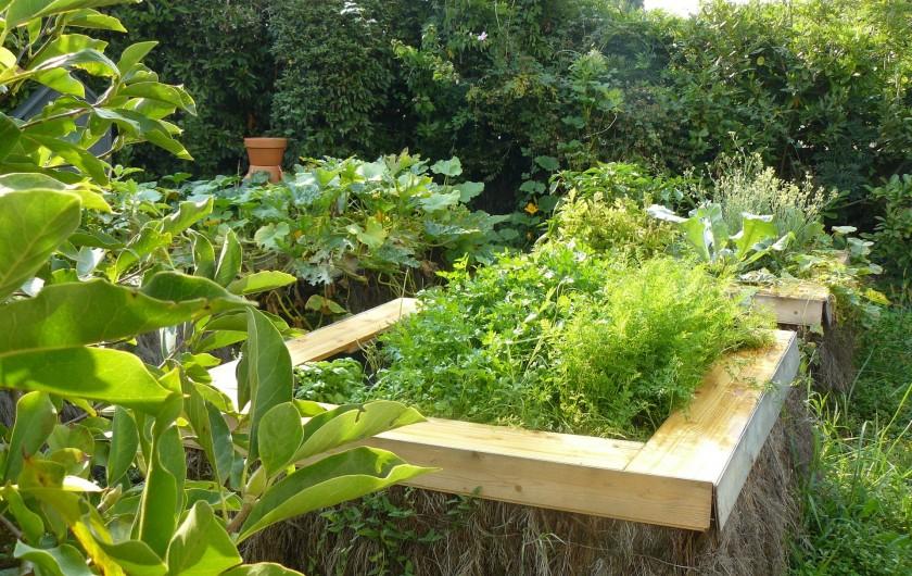 """Location de vacances - Villa à Arsac - """"Notre  potager""""                à disposition pour  des légumes d'été"""
