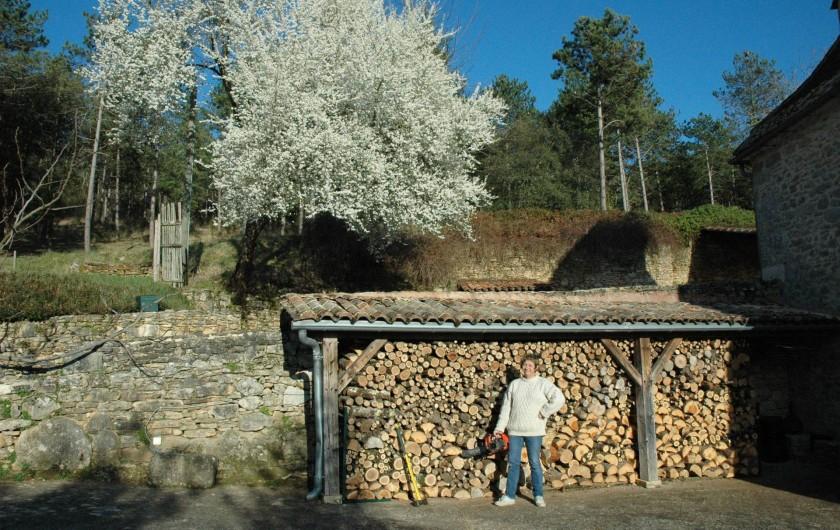 Location de vacances - Maison - Villa à Bézenac - Une bonne provision de bois pour la cheminée