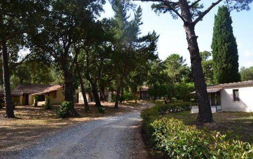 Location de vacances - Bungalow - Mobilhome à Favone