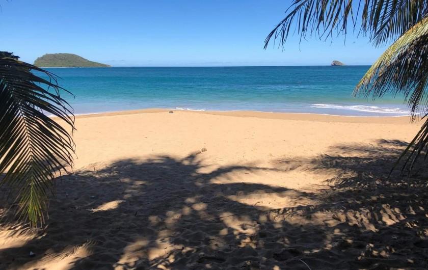 Location de vacances - Villa à Deshaies - Plage de La Perle