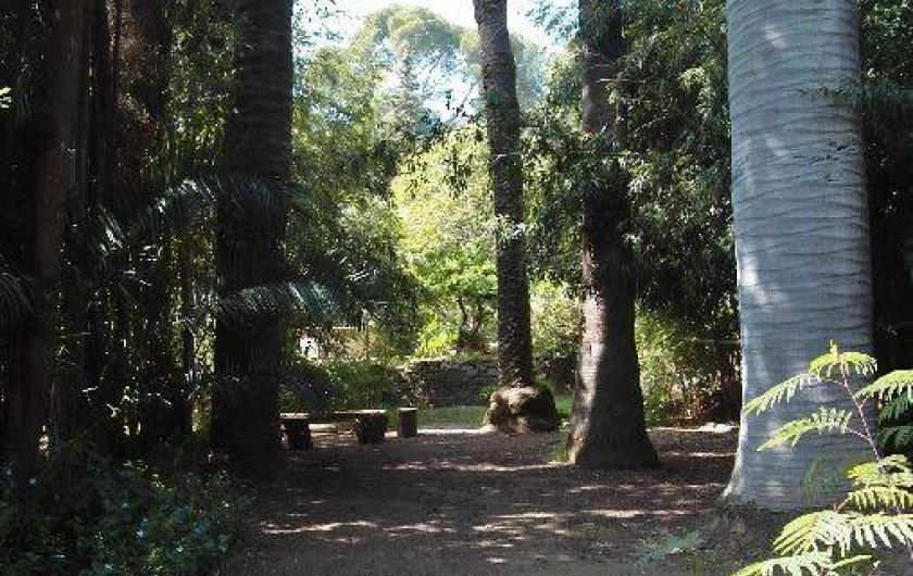 Location de vacances - Gîte à Carqueiranne