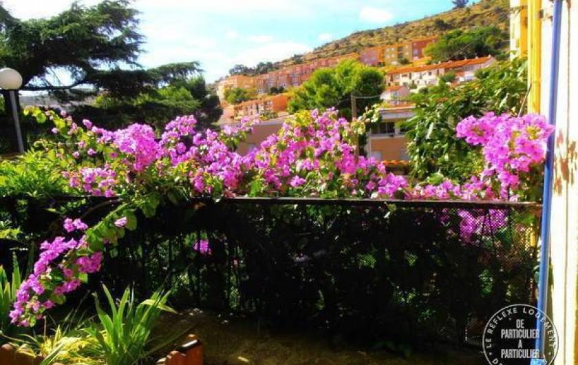 Location de vacances - Appartement à Port-Vendres