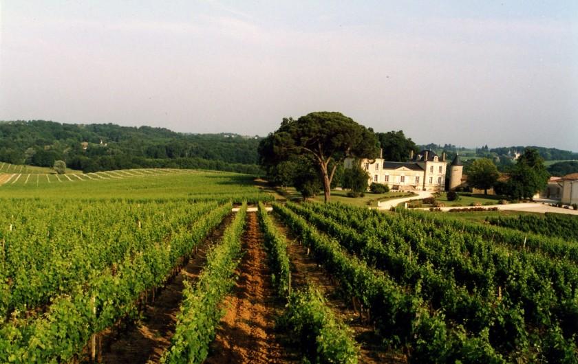 Location de vacances - Château - Manoir à Beychac-et-Caillau - Le vignoble autour du château