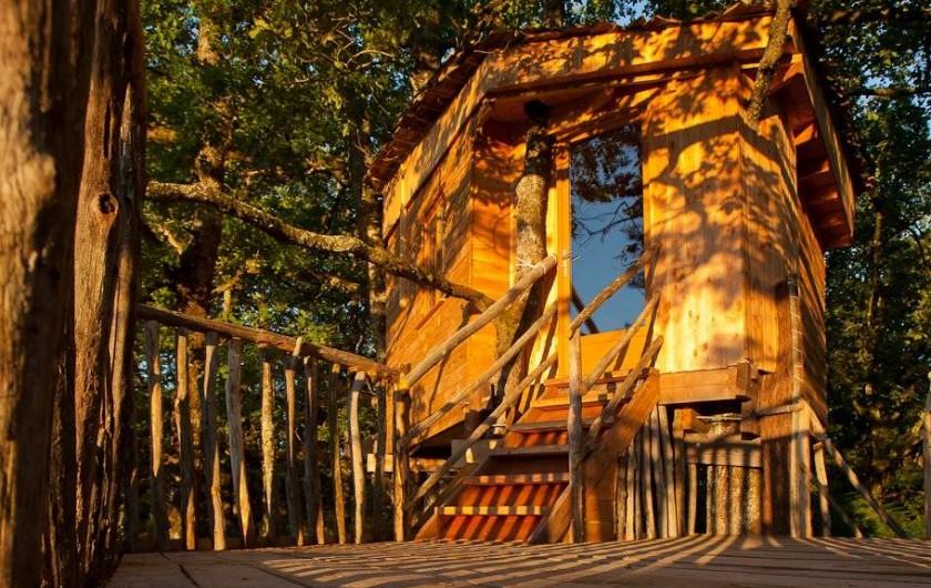 """Location de vacances - Chambre d'hôtes à Saint-Martial-Entraygues - Cabane """"Pin en Vert"""""""