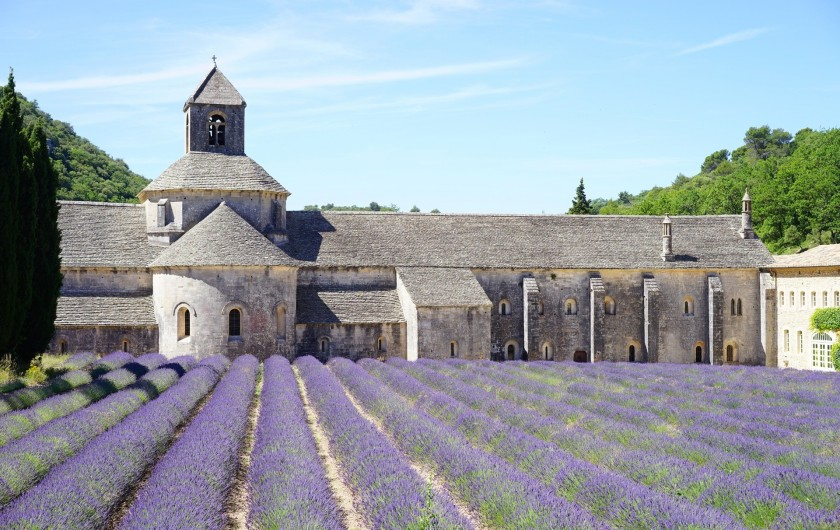 Location de vacances - Mas à Villelaure - L'abbaye de Sénanque (1 heure de route de la ferme)