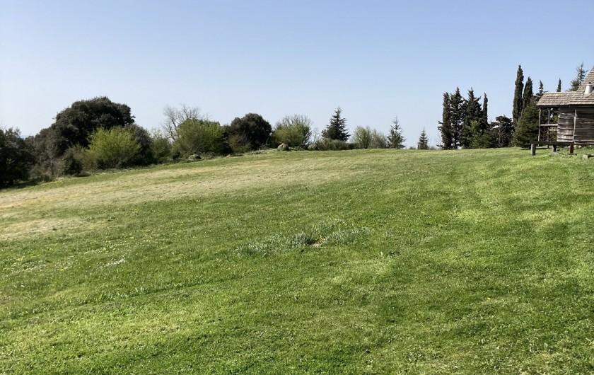 Location de vacances - Chambre d'hôtes à Saissac - Deux hectares de nature