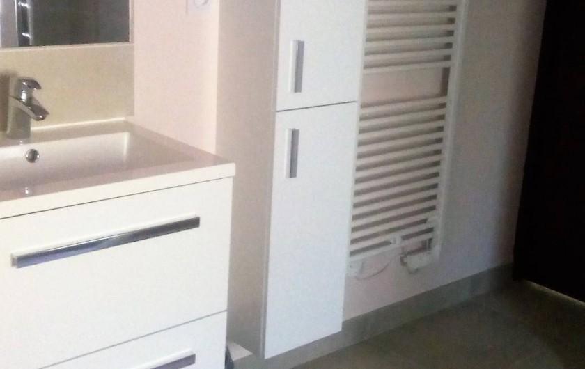 Location de vacances - Gîte à Saint-Romain-sur-Cher - meubles de la salle de bain