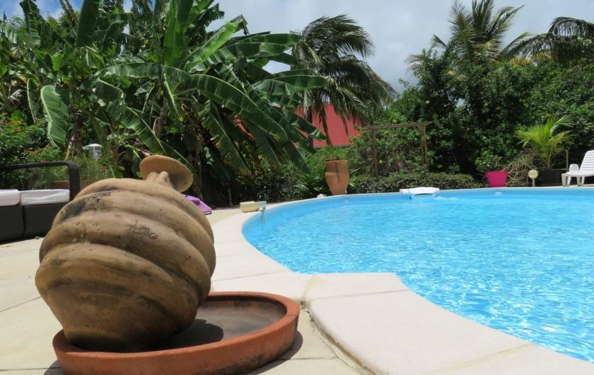 Location de vacances - Gîte à Le Moule - La piscine