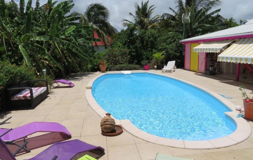 Location de vacances - Gîte à Le Moule - La grande piscine et la bananeraie