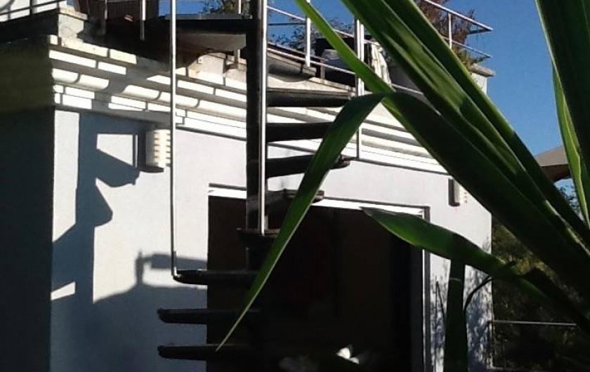Location de vacances - Villa à Cannes - escalier menant à la piscine