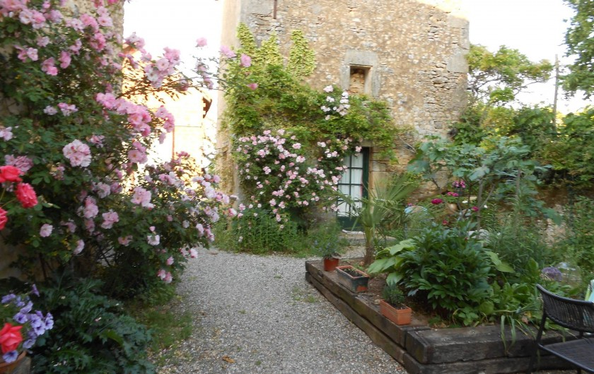 Location de vacances - Bungalow - Mobilhome à Le Buisson-de-Cadouin - La terrasse sur laquelle donnent trois chambres d'hôtes