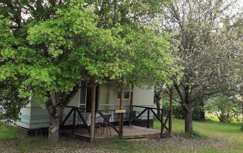 Location de vacances - Bungalow - Mobilhome à Le Buisson-de-Cadouin - Bingalow trés ombragé au milieu de chênes truffiers