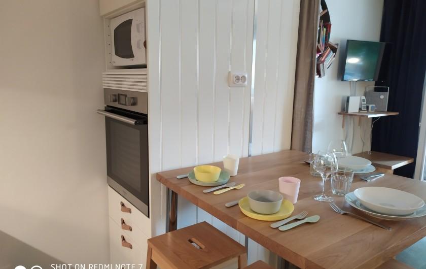 Location de vacances - Studio à Saint-Lary-Soulan - cuisine : four encastré à paroi froide (sécurité enfant), micro onde