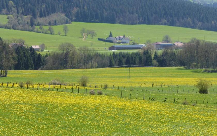 Location de vacances - Gîte à Les Fins - au printemps
