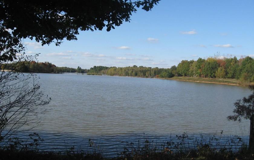 Location de vacances - Gîte à Souesmes - étang privé - PECHE - BAIGNADE