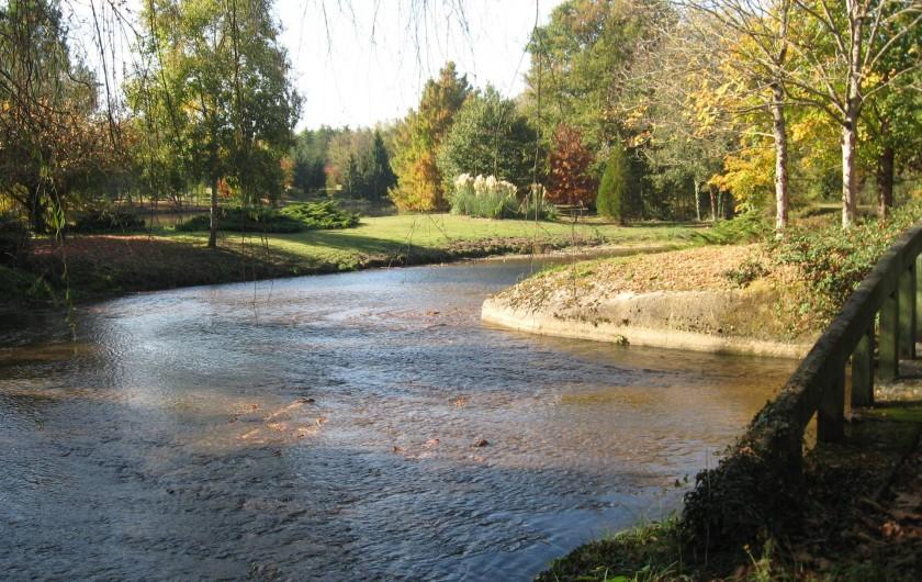 Location de vacances - Gîte à Souesmes - Rivière 1ère catégorie truites ...
