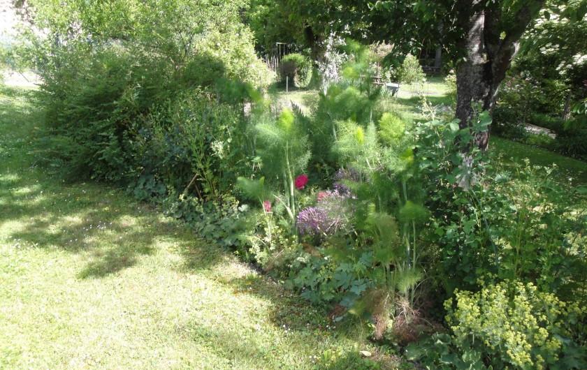Location de vacances - Chambre d'hôtes à Saint-Loup-de-Naud - Joyeux mélange d'alchémilles, ails d'ornement et rosiers