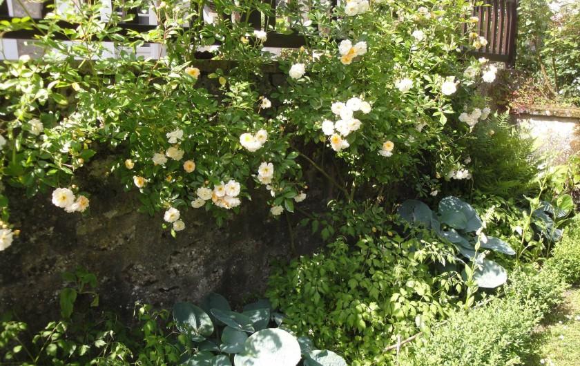 Location de vacances - Chambre d'hôtes à Saint-Loup-de-Naud - Ghislaine de Féligonde borde la cave
