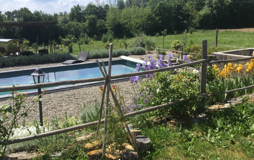 Location de vacances - Gîte à Lendou-en-Quercy - piscine coté entrée