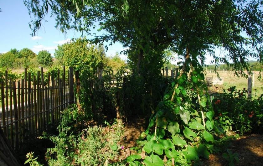 Location de vacances - Gîte à Lendou-en-Quercy - Visite du potager de Sylvie