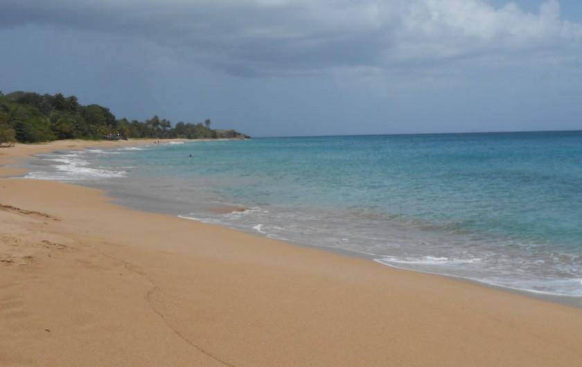 Location de vacances - Chalet à Deshaies - plage de Cluny
