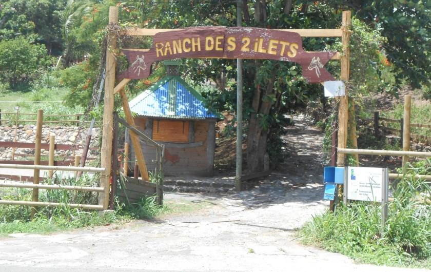 Location de vacances - Chalet à Deshaies - ranch pour les ballades à cheval