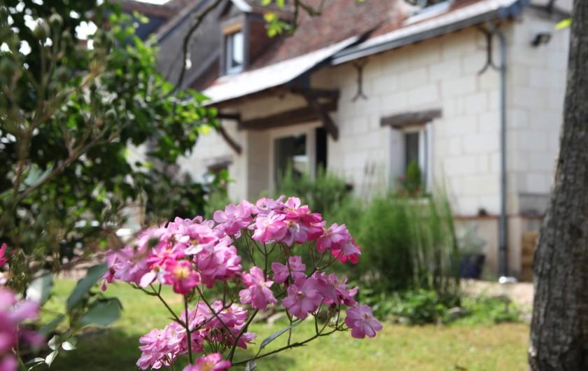 Location de vacances - Villa à Berthenay - façade ouest rosier-noyer