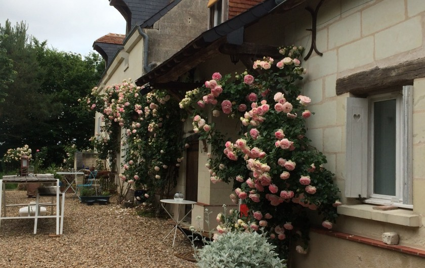Location de vacances - Villa à Berthenay - South front with Pierre de Ronsard roses