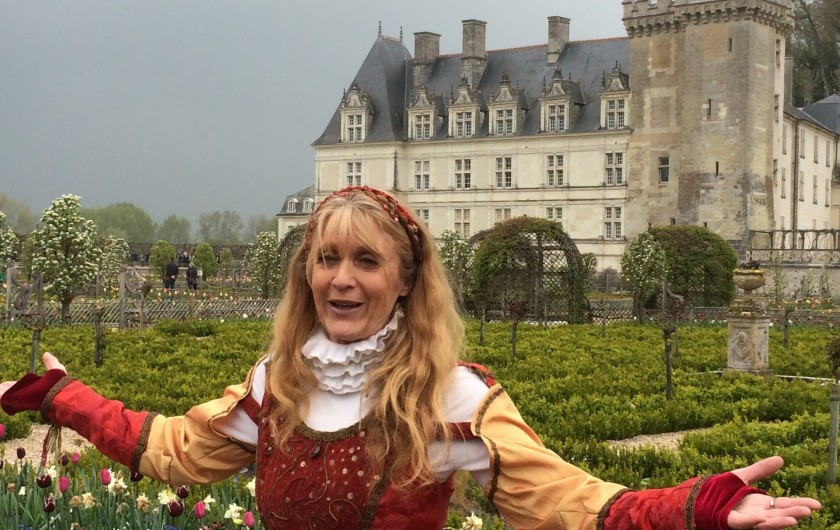 Location de vacances - Villa à Berthenay - Villandry le chateau et les jardins à côté