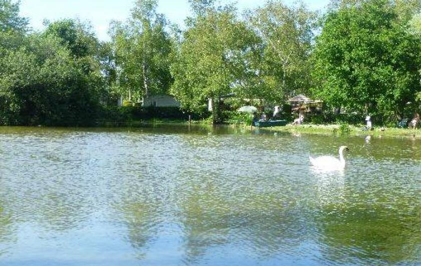 Mobil home dans camping avec piscine rang du fliers for Camping nord pas de calais avec piscine couverte