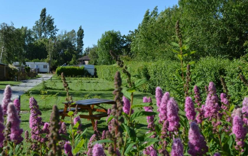 Location de vacances - Bungalow - Mobilhome à Aire-sur-la-Lys - Un cadre verdoyant et reposant