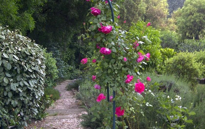 Location de vacances - Chambre d'hôtes à Ramatuelle - Vue Jardin