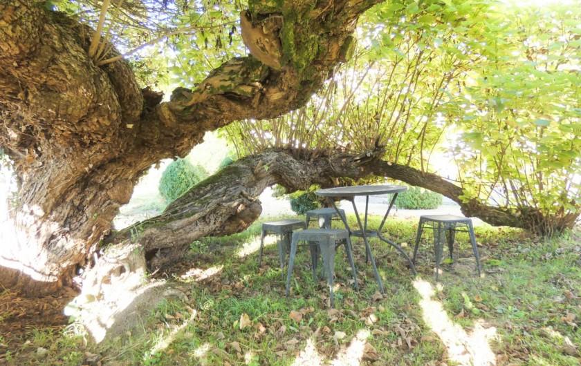 Location de vacances - Chambre d'hôtes à Lucbardez-et-Bargues