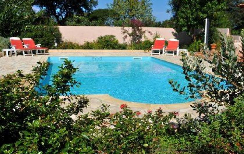 Location Villa Calvi Avec Piscine