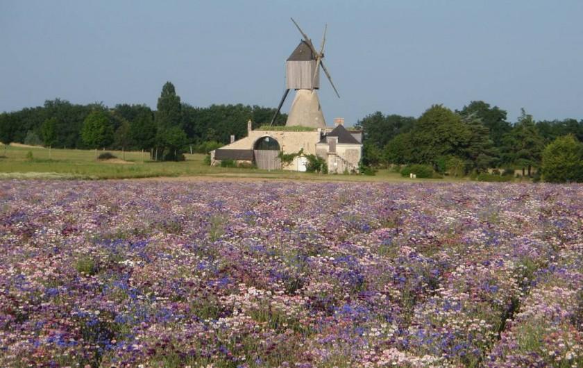 """Location de vacances - Gîte à Saint-Rémy-la-Varenne - moulin du Bourgdion  """"500 m du gîte"""""""