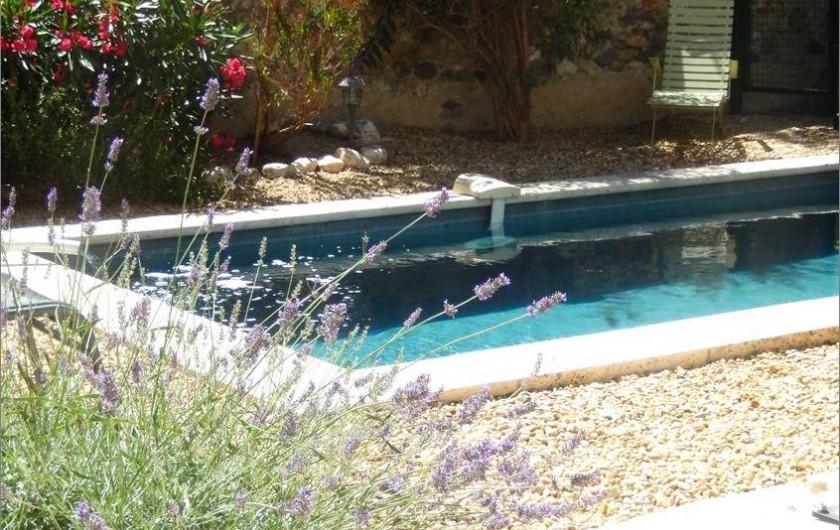 Location de vacances - Villa à La Redorte - Jardin clos avec piscine privative