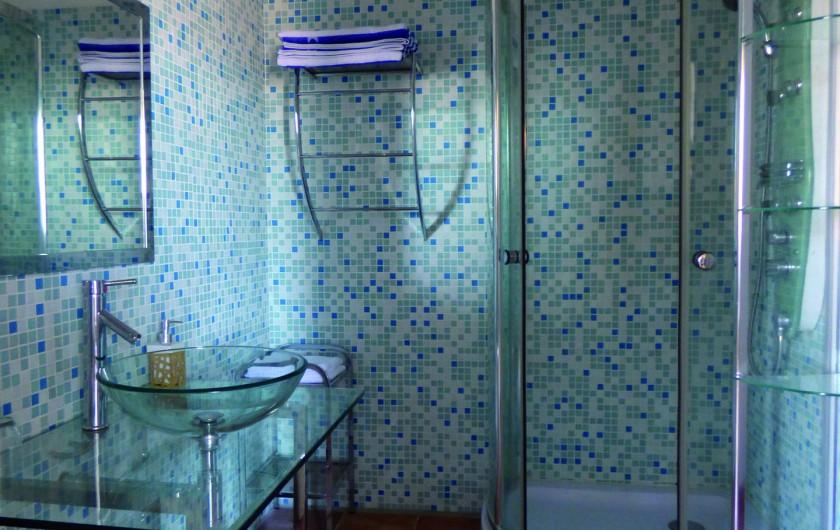 Location de vacances - Hôtel - Auberge à Saint-Christol-lès-Alès - Salle de bain Zèbre
