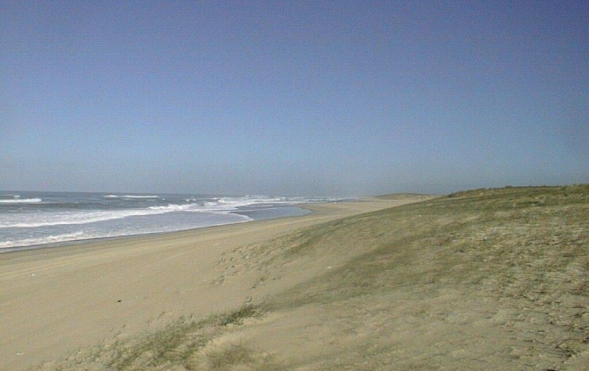 Location de vacances - Appartement à Moliets-et-Maa - La plage