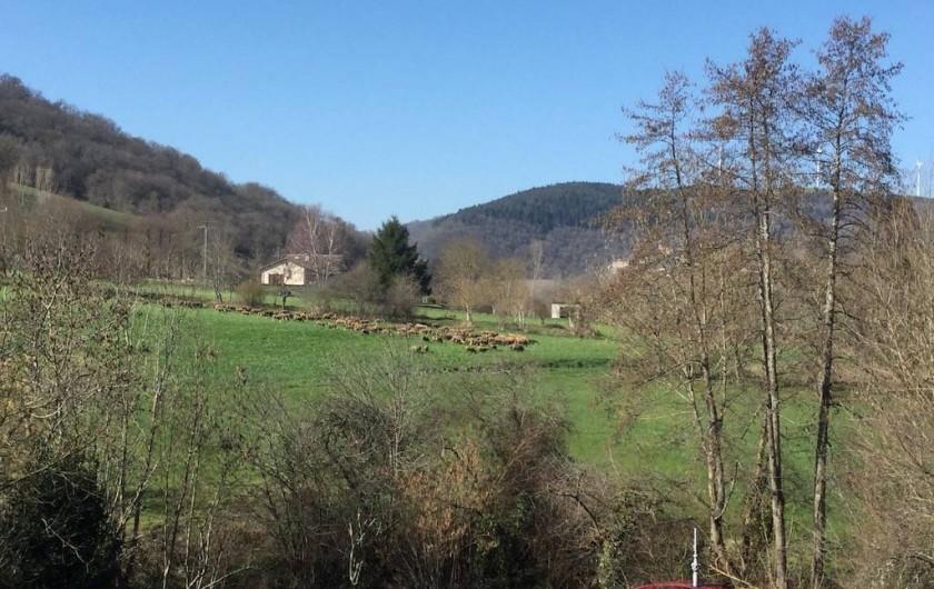 Location de vacances - Maison - Villa à Curvalle - Vue depuis la Terrasse