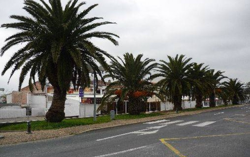 Location de vacances - Villa à Boyardville