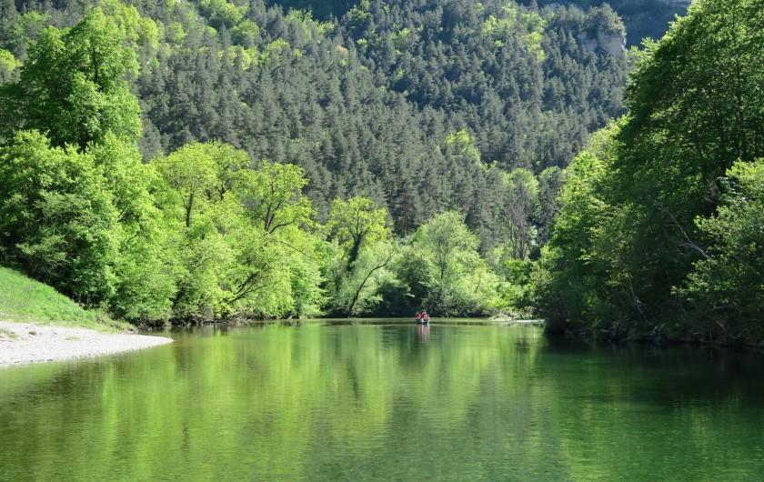 Location de vacances - Gîte à La Malène - le Tarn a la malene