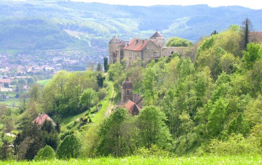 Location de vacances - Maison - Villa à Sancey-le-Grand - Le château de Belvoir à 5 mn