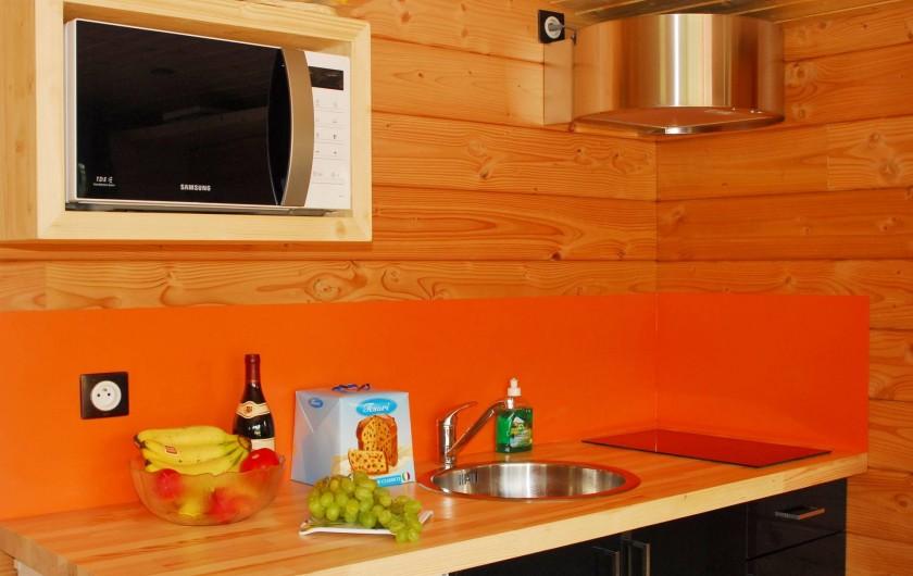 Location de vacances - Bateau à Chassenard - Coin cuisine de la toue cabanée