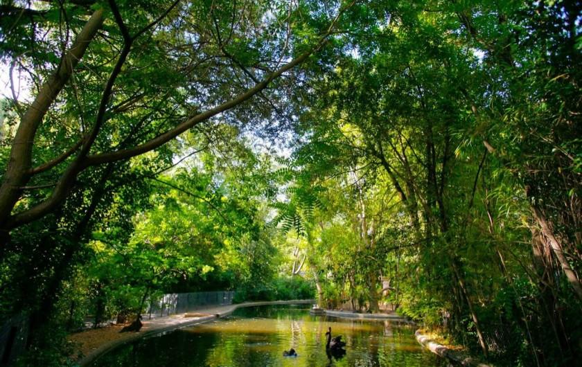 """Location de vacances - Maison - Villa à Pézenas - Pézenas le parc """"Sans Souci"""""""