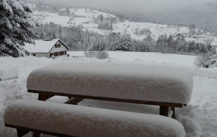 Location de vacances - Chalet à Basse-sur-le-Rupt - Vue depuis la terrasse