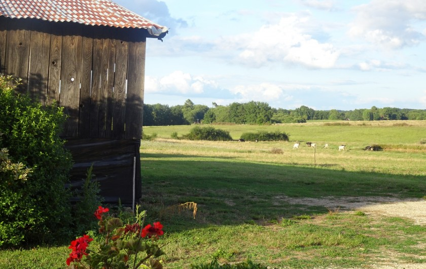 Location de vacances - Chambre d'hôtes à Saint-Avit-Sénieur