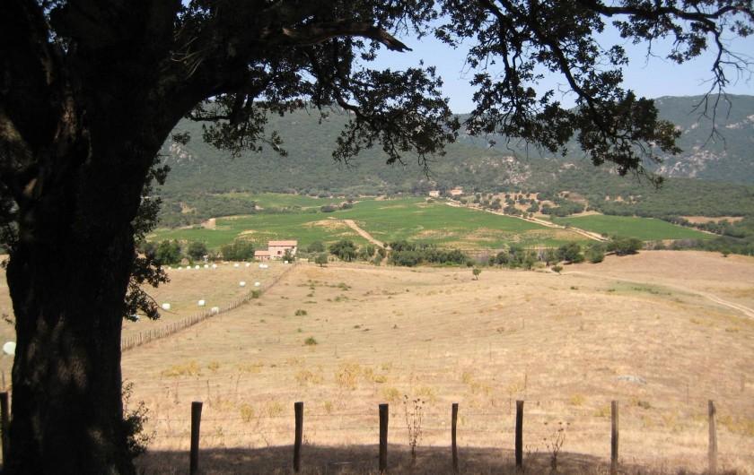 Location de vacances - Appartement à Sartène - Vue sur la vallée