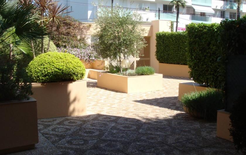 Location de vacances - Studio à Antibes - entrée de la résidence avec son olivier et son parvis arboré