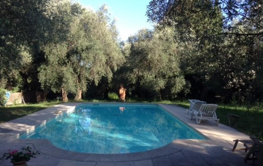 Location de vacances - Mas à Grasse - Grande piscine ensoleillée et sécurisée de 5x12
